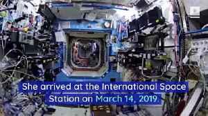 Astronaut Christina Koch Breaks Spaceflight Record [Video]