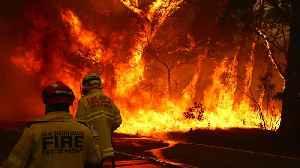Death Toll Rises As Around 100 Fires Still Burn In Australia [Video]