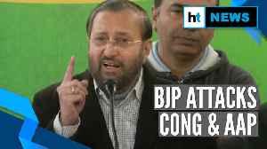 News video: 'Congress-AAP behind violent anti-CAA protests in Delhi': Prakash Javadekar