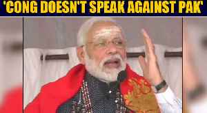 News video: PM Modi defends CAA, accuses Cong of not speaking against Pakistan | OneIndia News
