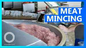 Man dies after falling into meat mincing machine in Malaysia. [Video]