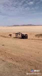 Desert Items for Sale Using Honor System [Video]
