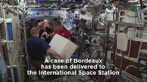 Space case: why are 12 bottles of Bordeaux on the International Space Station? [Video]