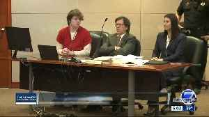 Adult suspect in STEM school shooting pleads not guilty at arraignment [Video]