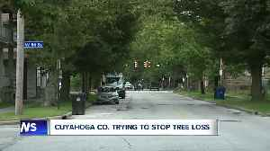 Cuyahoga county trying to stop tree loss [Video]
