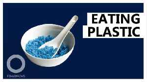 This is the amount of plastic particles ingested by humans [Video]