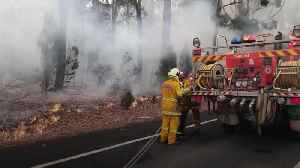 Australia commits billions to wildfire recovery fund [Video]