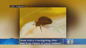 Police Investigating After Bed Bugs Found At Local Walmart [Video]