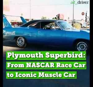 Plymouth Superbird: From NASCAR Race Car to Iconic Muscle Car [Video]