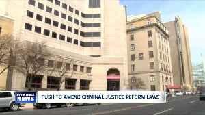 Buffalo Common Council Members urge New York State Legislature amend bail reform law [Video]