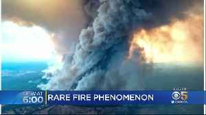 Bay Area Climate Scientists Study Rare Cloud Generated By Australia Wildfires [Video]