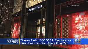 Thieves Target Mag Mile Louis Vuitton [Video]
