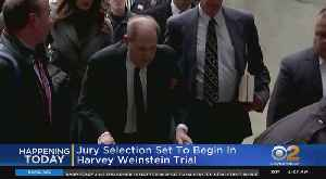 News video: Harvey Weinstein Trial: Jury Selection Today