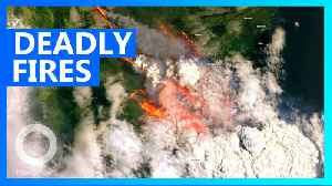 Satellite images show the scale of Australia's wildfires [Video]