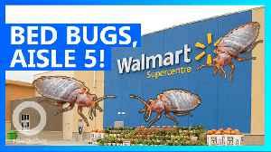 News video: Someone released bedbugs inside a Pennsylvania Walmart