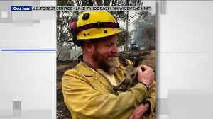 California Fire Captain Helping Fight Australia's Raging Bushfires [Video]