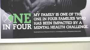 Tippecanoe County mental health leaders call for action [Video]