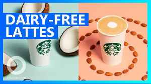 News video: Starbucks introduces new nondairy drinks, tests oat milk