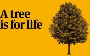 Play your part in the Guardian's charity appeal: a tree is for life – video [Video]