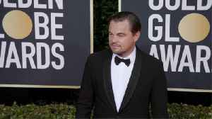 Leonardo DiCaprio reportedly helps save man from drowning during Caribbean vacation [Video]