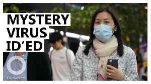 Mystery pneumonia virus identified in China [Video]