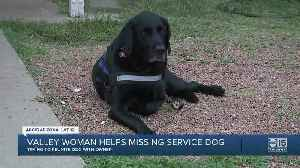 Valley woman helps missing service dog [Video]