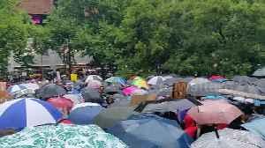 Melbourne demonstrators shelter under hundreds of umbrellas at climate protest [Video]
