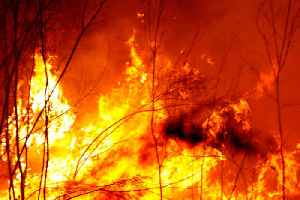 News video: Australia Urges Nearly 250,000 to Evacuate Due to Massive Bushfires