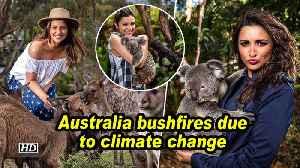Parineeti: Australia bushfires due to climate change [Video]