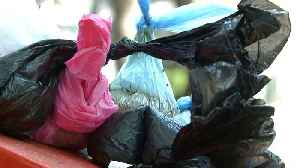 Plastic bag ban goes into effect in Mexico City [Video]