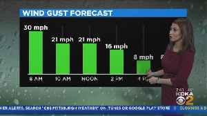 KDKA-TV Weekend Forecast (1/12) [Video]