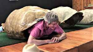 Very inspiring 82-year-old grandma squeezes into giant tortoise shell [Video]