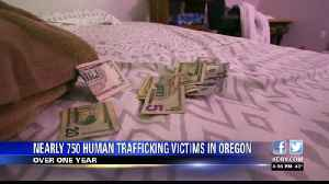 Nearly 750 human trafficking victims in Oregon throughout past year [Video]