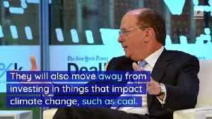 BlackRock CEO Larry Fink Wants to Tackle Global Warming [Video]