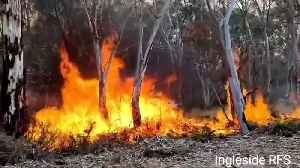 Australia softens climate change rhetoric as bushfires, and voters, rage [Video]