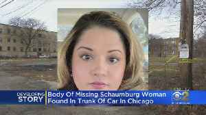 Body Of Missing Schaumburg Woman Found [Video]
