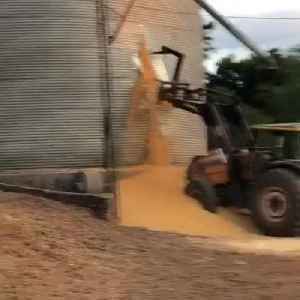 Grain Storage Silo Develops Hole and Collapses on Heavy Duty Vehicle [Video]