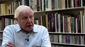 'The moment of crisis has come' - naturalist Attenborough on climate change [Video]