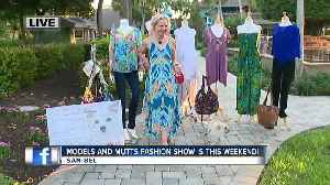 Models and Mutts Fashion Show is raising funds for Gulf Coast Humane Society this weekend [Video]