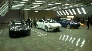 Tesla seeks shift from 'Made in China' to 'Designed in China' [Video]
