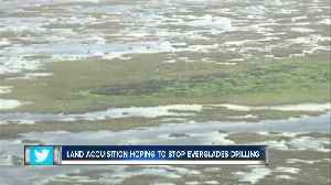 News video: Florida to buy 20,000 acres of Everglades land to prevent oil drilling in western Broward County