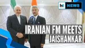 External Affairs Minister Jaishankar holds talks with Iranian FM Javad Zarif [Video]