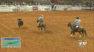 News video: Fort Worth Stock Show Set To Kick Off At Dickies Arena