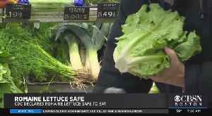 CDC Declares Romaine Lettuce Safe To Eat [Video]