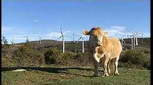 The Brief: funding Europe's green ambitions [Video]