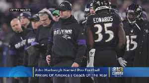 John Harbaugh Named Pro Football Writers Of America's Coach Of The Year [Video]