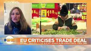 EU trade chief says US-China trade deal is political stunt [Video]