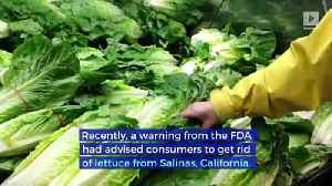 CDC and FDA Declare Lettuce Safe to Eat and E.Coli Outbreak Over [Video]