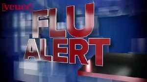 Flu Outbreak Closes Illinois School District [Video]
