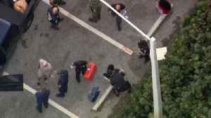 CHOPPER 5 VIDEO: Asian immigrants detained after coming ashore on Palm Beach ahead of President Trump's visit, police say [Video]